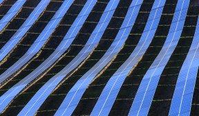 Немската Aquila Capital купува 170 МВт соларни проекти в Поругалия